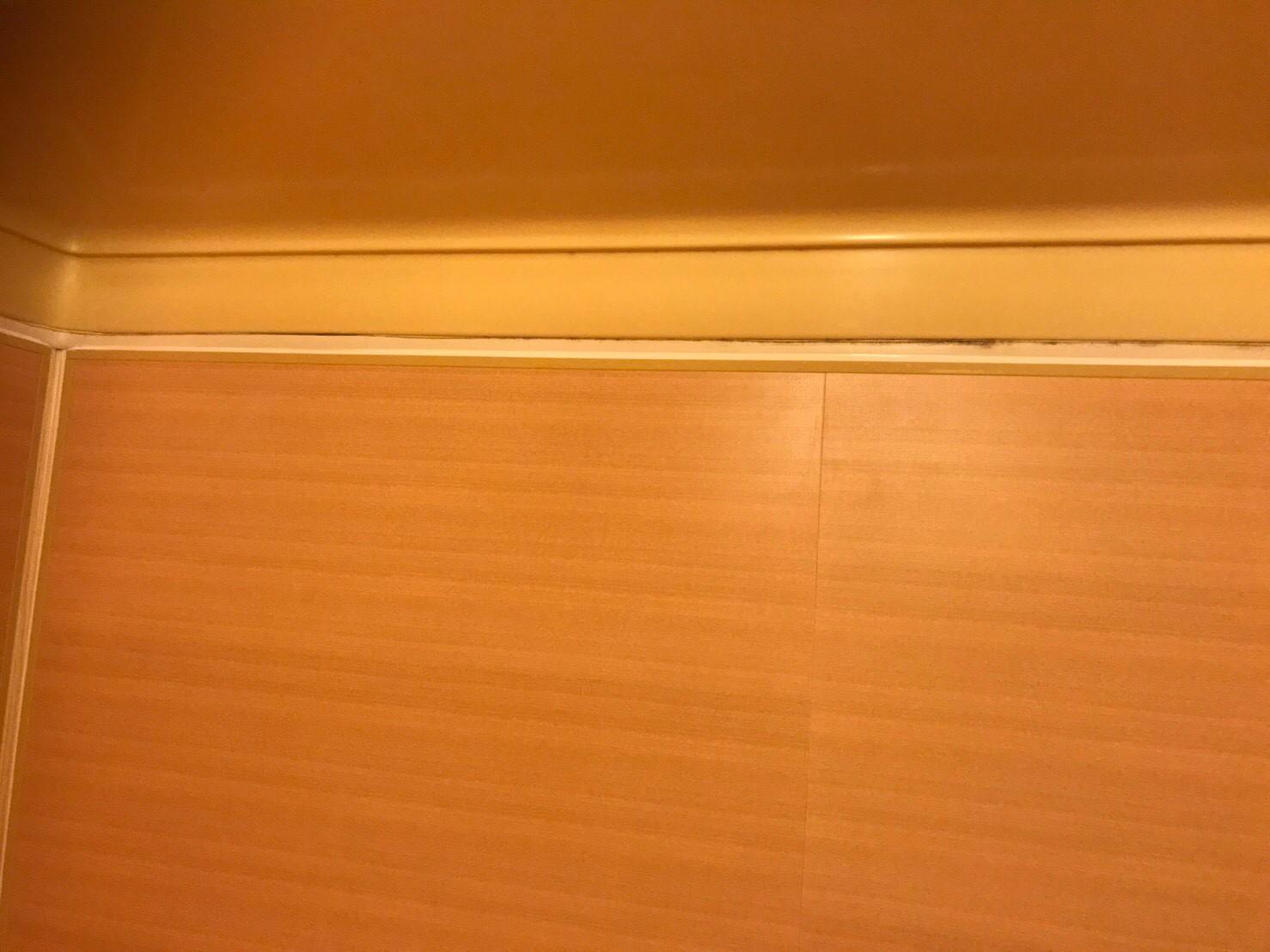 マンション 浴室壁リフォーム工事 (神奈川県横浜市港北区)